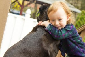 Why All Children Should Have Pets