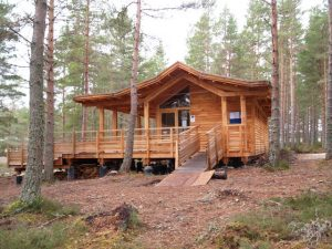 Why You Should Consider Log Cabin Living