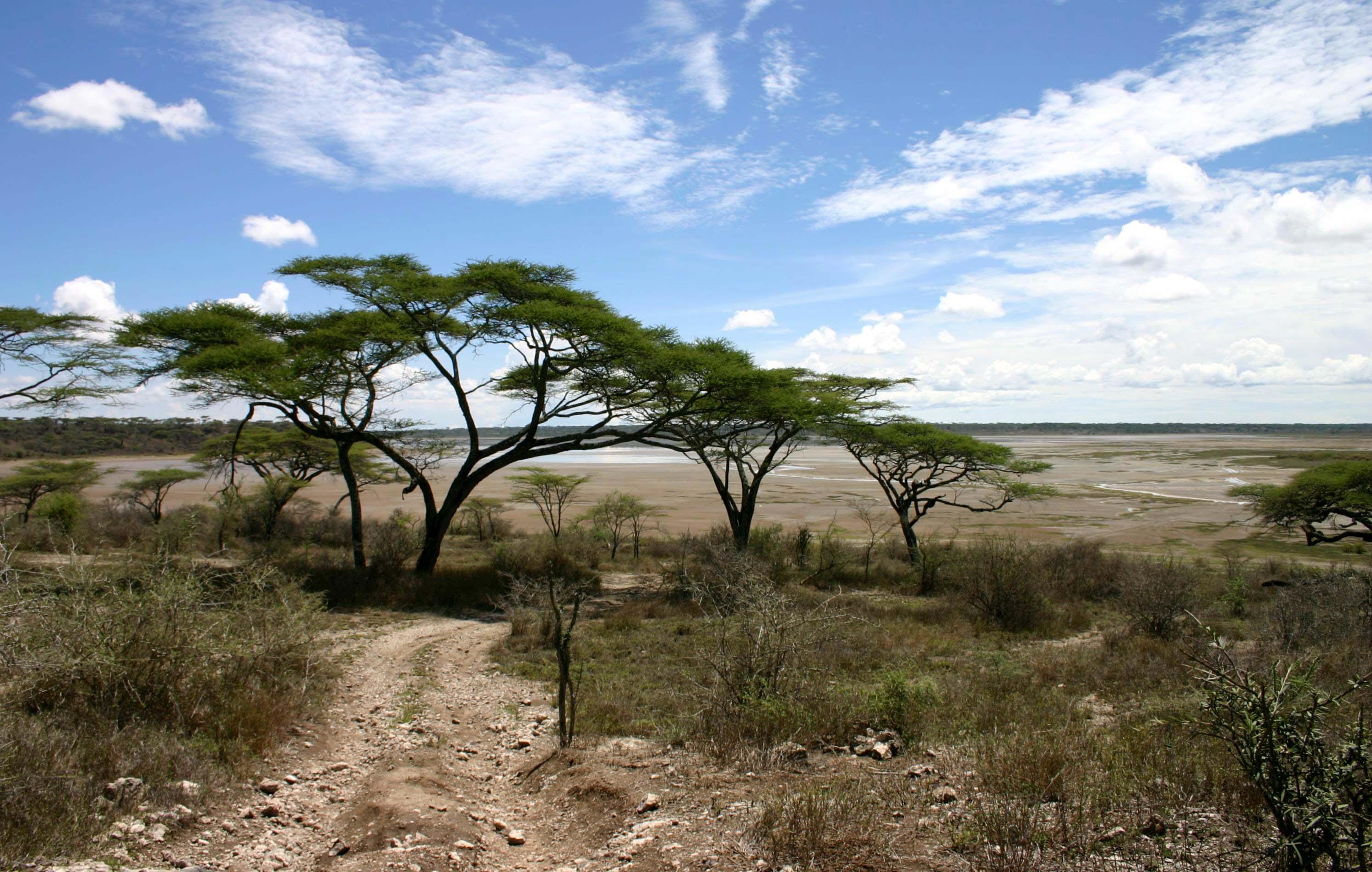 Mahale Mountains Park, Tanzania