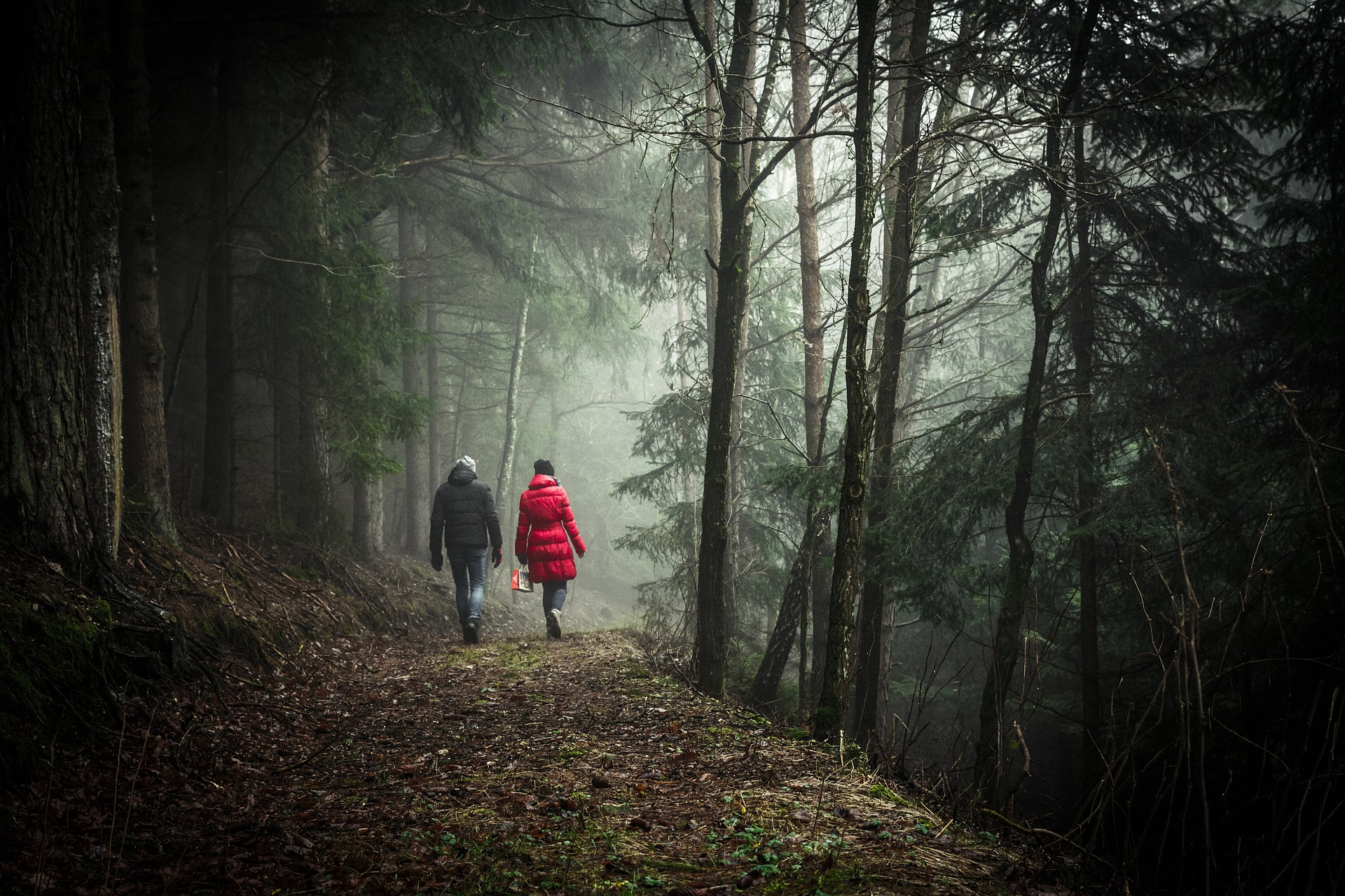 Go for a walk in nature with a friend when you are feeling bored and/or anxious.