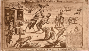 Artist's rendition of the locusts swarm in 1875