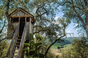 Choose rustic or luxury tree houses AirBnB