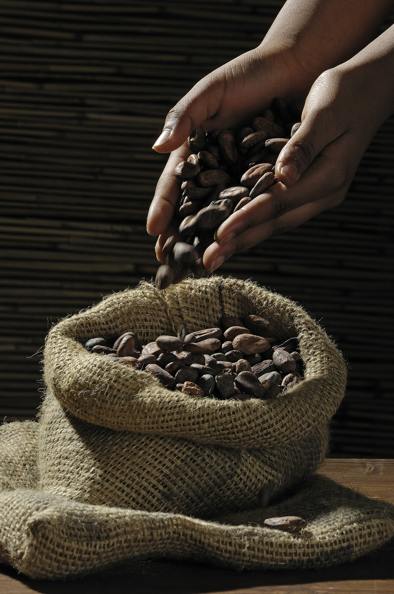 Organic cacao beans.