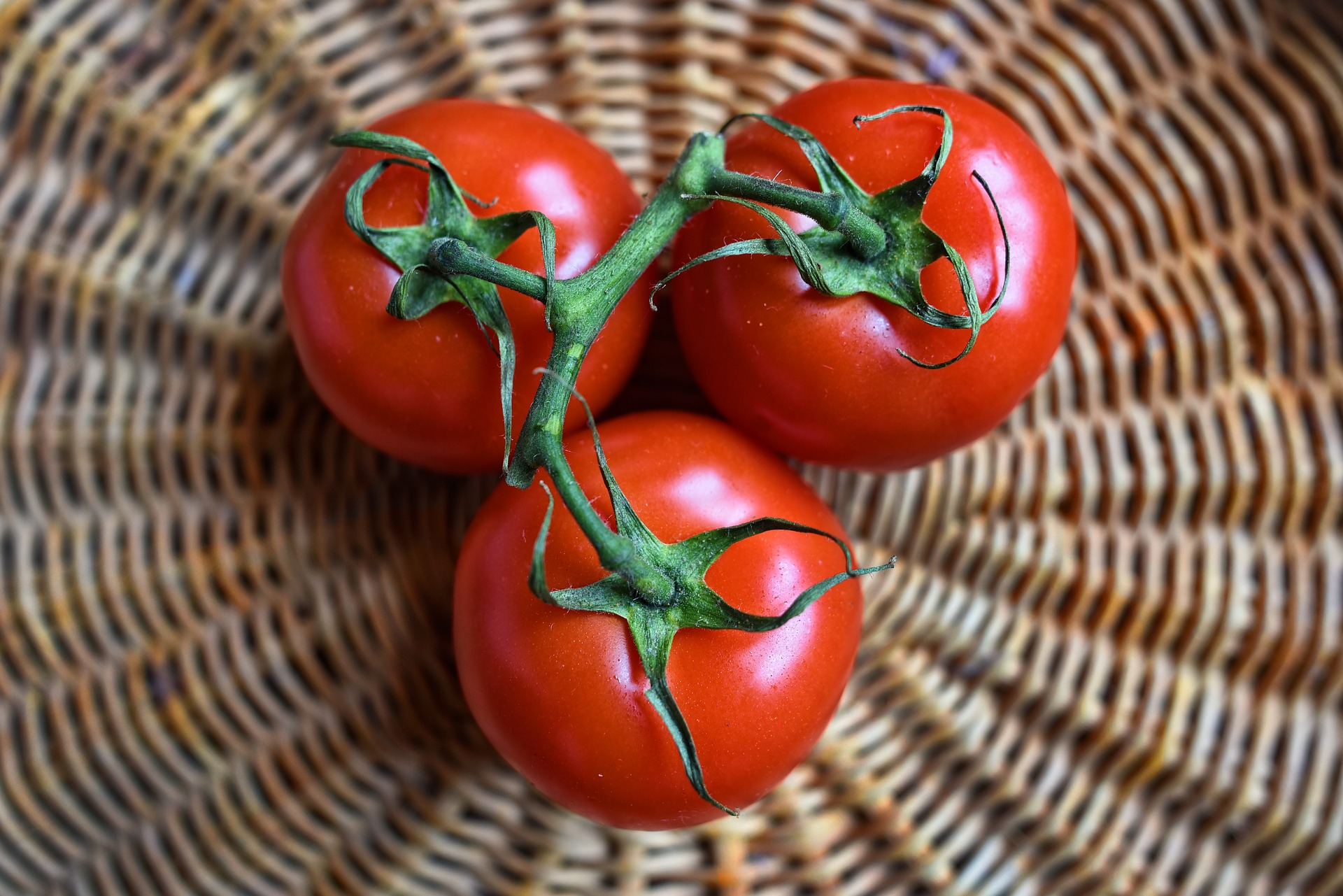 A spicy tomato would be delicious, first off, but it would also make it easier to get capsaicinoids, which are used for pepper spray and anaesthetics.