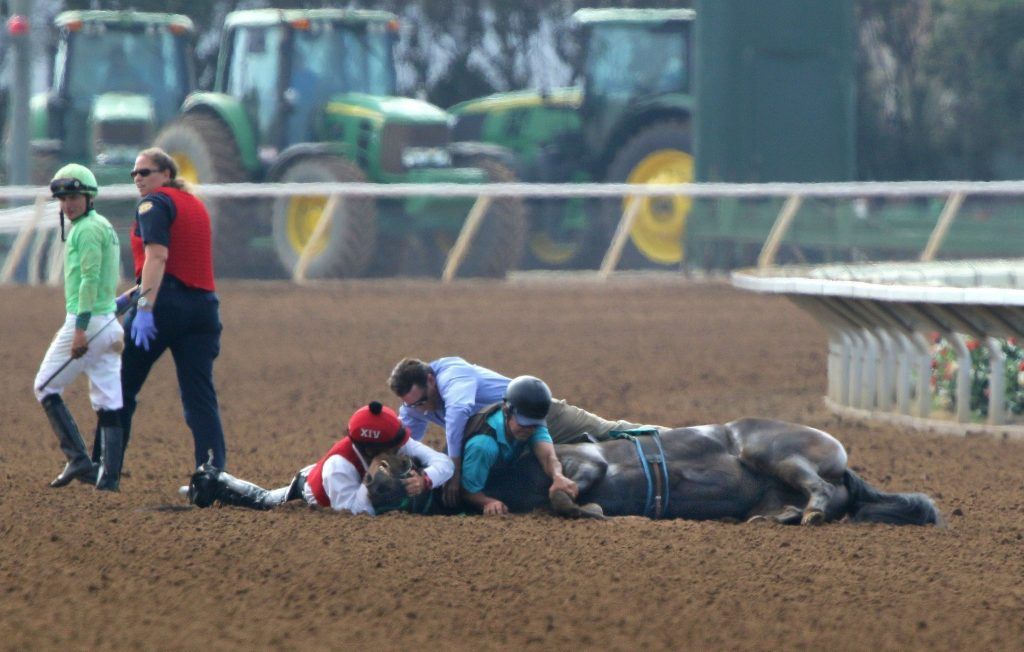 This kind of scene is all too familiar at Santa Anita Park.