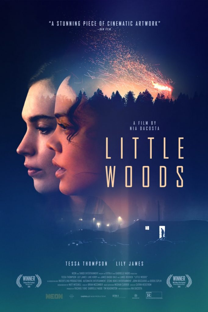 Little Woods is a powerful tale and the Gildshire Movie of the Fortnight.