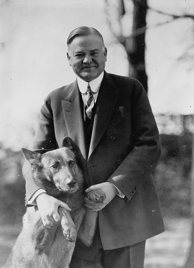 "Herbert Hoover with his pet Belgian Shepherd dog ""King Tut"""