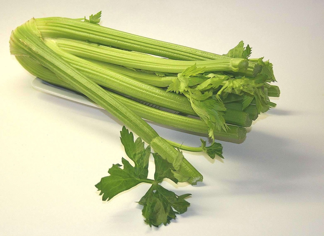 Is Celery The Most Underrated Vegetable?