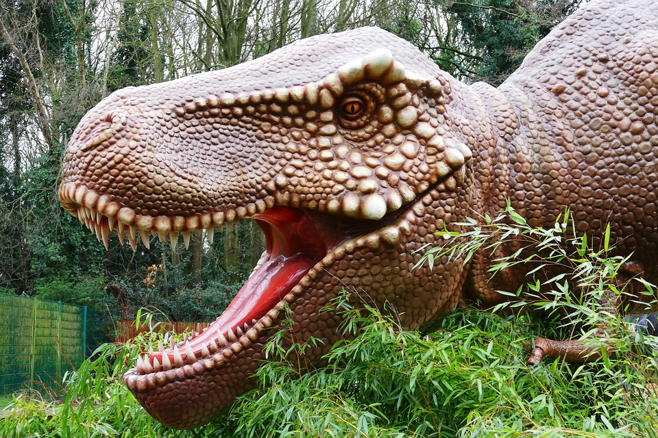 Stop Believing These Eight Myths about Dinosaurs
