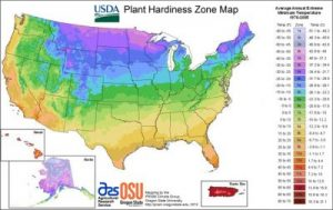 April gardening: Plant Hardiness Zone Map