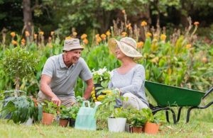Why Gardening Is Healthy for You? April gardening brings out the hat in the best of us.